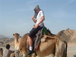 Our eldest son, he loved the experience of the camel safari, but found it uncomfortable in the saddle; he couldn't keep still. - April 2008