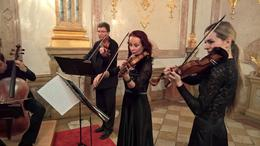 musicians , Konrad H - February 2017