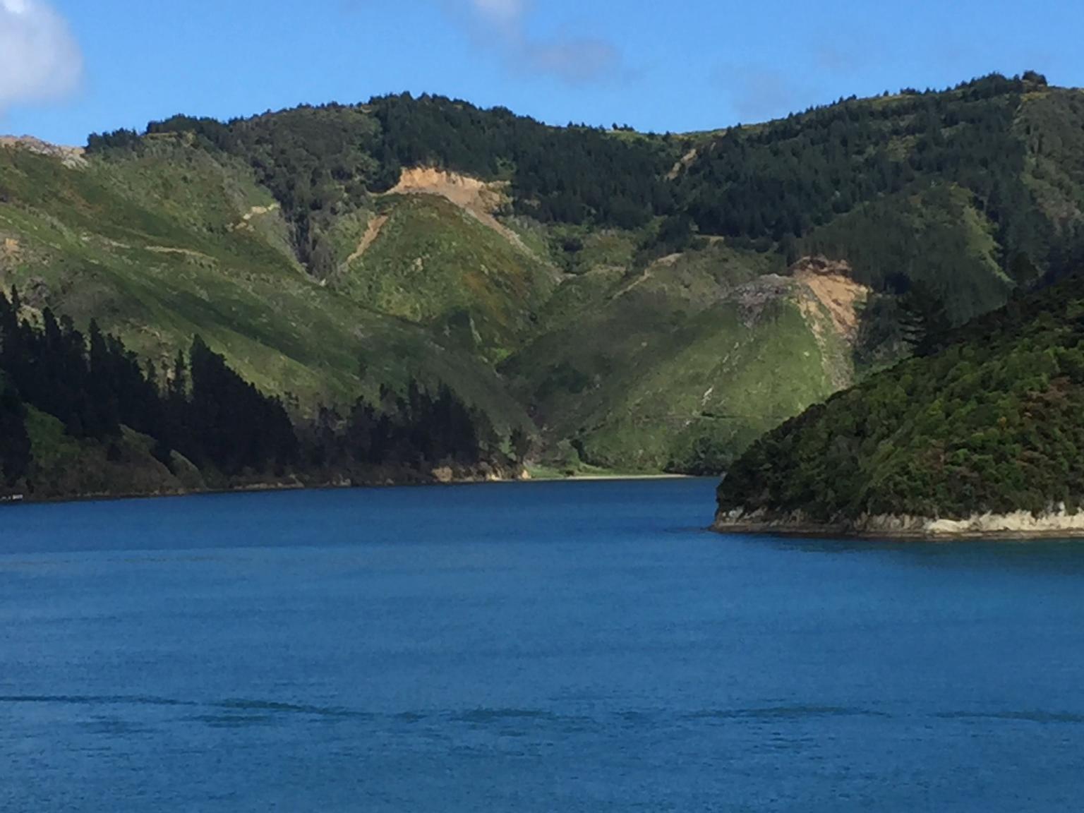 MAIS FOTOS, InterIslander Ferry - Picton to Wellington