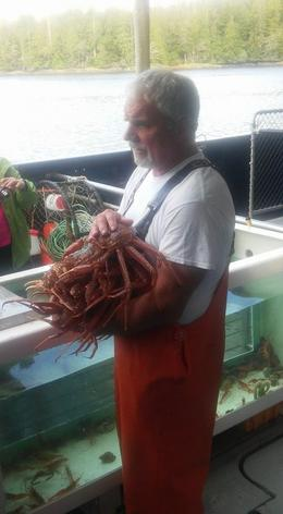 Now that is am armful of crabs. , Donald B - September 2016