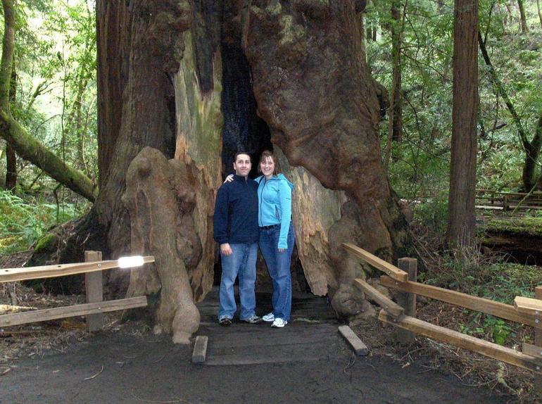 excursion-une-demi-journee-a-sequoias-giant-redwoods