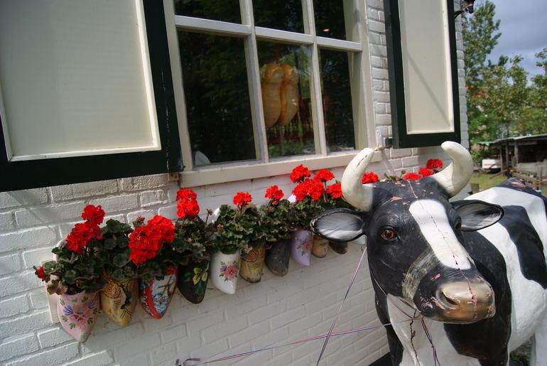 Tienda de quesos - Amsterdam