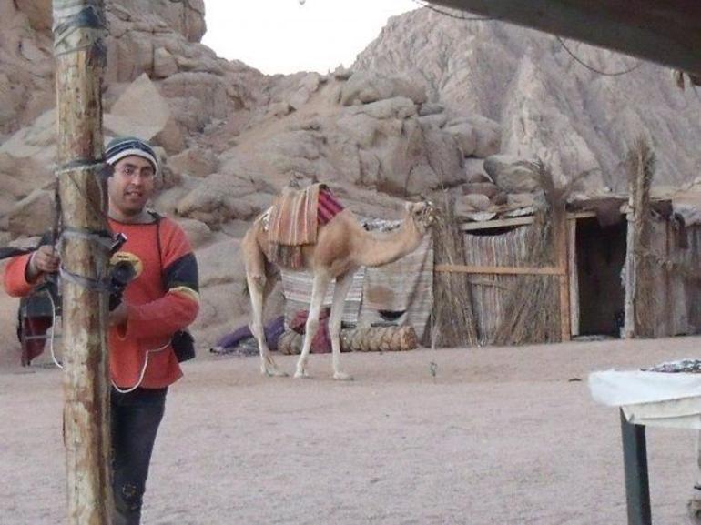 Anyone for a camel ride.... - Sharm el Sheikh