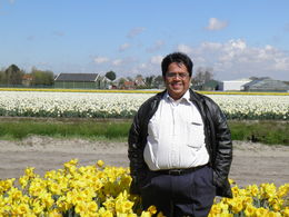 Enjoying Farm of flowers including Tulip , RAJESH D - April 2016