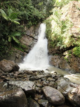 Waterfall , Susan A - December 2011