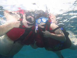 Chet And Paula snorkeling , CHESTER o - February 2015