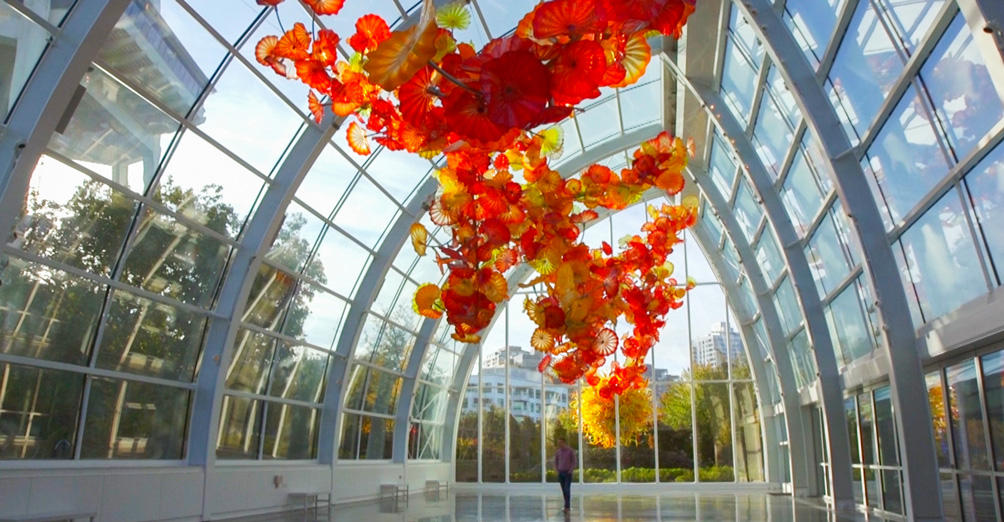 seattle chihuly garden and glass exhibit admission 2018 - Glass Garden Seattle