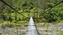Hiking Around Iquitos and the Amazon Rainforest