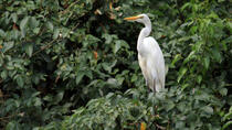 Dr Salim Ali Bird Sanctuary