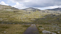 Mount Kosciuszko National Park