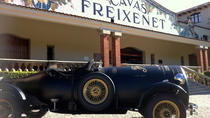 Freixenet Winery