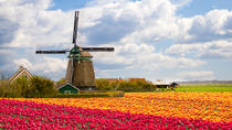 Holland Windmill Tours from Amsterdam