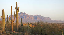3 Days in Phoenix: Suggested Itineraries
