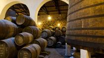 Portuguese Wine Tasting in Lisbon