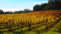 3 Days in Napa & Sonoma: Suggested Itineraries
