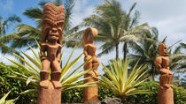 Interisland Tours from Oahu