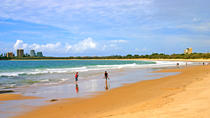 Sunshine Coast Tours from Brisbane