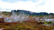 Wairakei Natural Thermal Valley