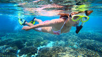 Top Snorkeling and Scuba Diving Spots in Byron Bay