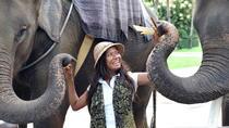 Chiang Mai Zoo & Aquarium
