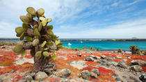 Island Hopping in the Galapagos