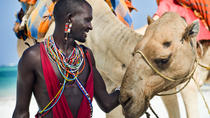 Ways to Experience Maasai Culture in Kenya