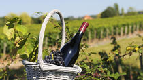 Wine Tasting Near Lyon: Beaujolais