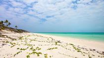 Little Water Cay (Iguana Island)