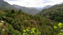 Chirripo National Park