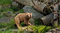 Salzburg Zoo