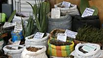 Witch Market (Mercado de Brujos)