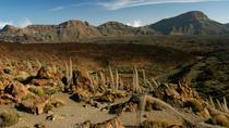 Exploring Teide National Park