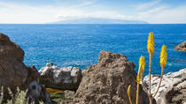 Day Trips from Tenerife