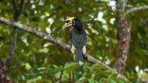 Owabi Wildlife Sanctuary