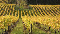Ultimate Winery Experiences