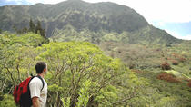 Top Hiking Trails in Oahu