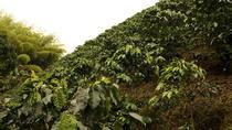 Exploring Valle del Cauca