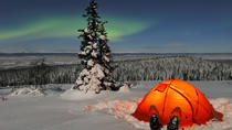 3 Days in Lapland: Suggested Itineraries