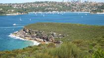 Sydney Nature Walks
