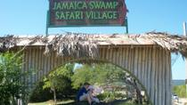 Jamaica Swamp Safari Village