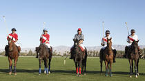 Play Polo in Argentina: Best Trips from Buenos Aires