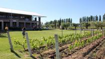 Achaval Ferrer Winery