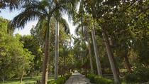 Aswan Botanic Garden