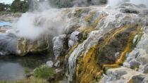 Visiting the Hot Springs of Rotorua