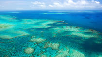 Best Ways to See the Great Barrier Reef