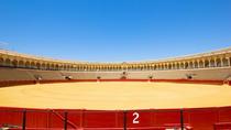 Valencia Bullring (Plaza de Toros)