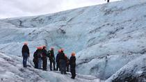 Top Glacier Tours in Iceland