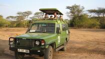 Outdoor Adventures in Tanzania