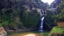 Jimenoa Falls (Salto de Jimenoa)
