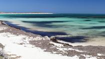 Abrolhos Island